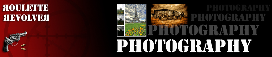 wordpress_bannerHDR
